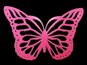 theme papillon pour chambre fille